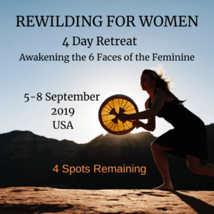 Rewilding For Women retreat